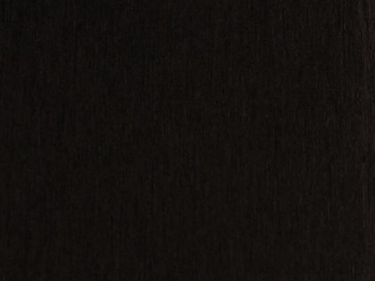 beech 099 black