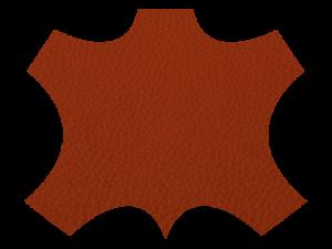 8056  orange